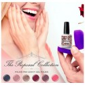THE PROPOSAL COLLECTION